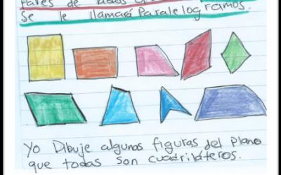 Un diario íntimo de matemáticas